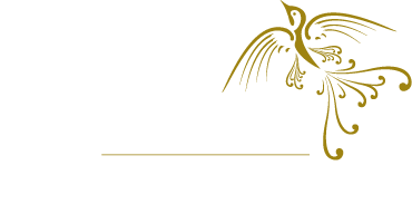 DkIT - Dundalk Institute of Technology